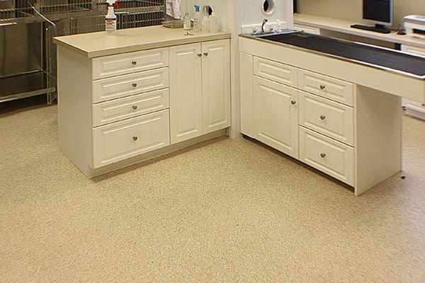 Veterinary Office Flooring